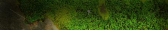 cropped-moss-shadowy-dec-17.png