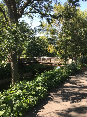 The UC Davis Arboretum. Photo Credit: Breanne Weber